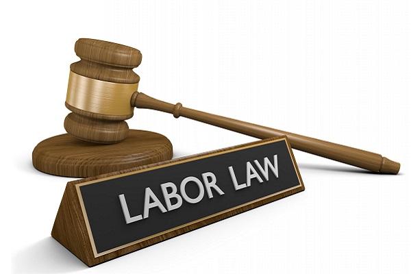 dịch vụ luật sư lao động luật L24H